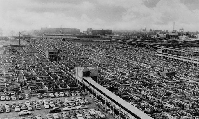 Die Union Stockyards in den 50er Jahren