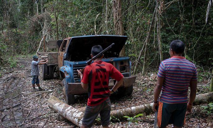 Indigene Gemeinschaften geraten oft in Konflikt mit illegalen Abholzern. Im Bild patroullieren Mitglieder der Arara ihr Gebiet im Bundesstaat Para. Sie hatten diesen Truck für den Holztransport enteckt und in Brand gesteckt.
