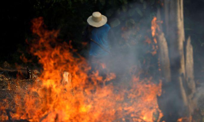 Ein Bild von den Bränden im Amazonas-Gebiet vom 21. August.