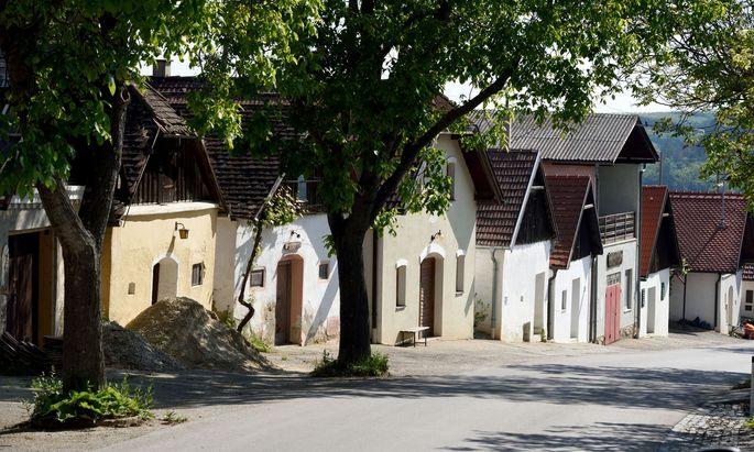 Cluster beim Weinherbst Weissenkirchen, Bezirk Krems (Symbolbild)
