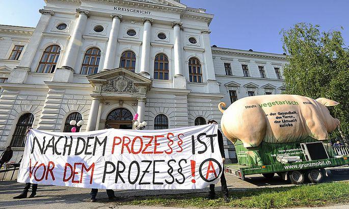 Archivbild: Eine Kundgebung im Wiener Neustädter Gericht im Mai 2011
