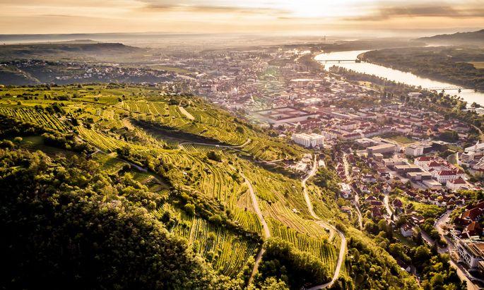 Der Kremser Kögl mit seinen Steinterrassen gilt als eine der besten Lagen des Kremstals. Hier befinden sich auch Weingärten der Stadt Krems.