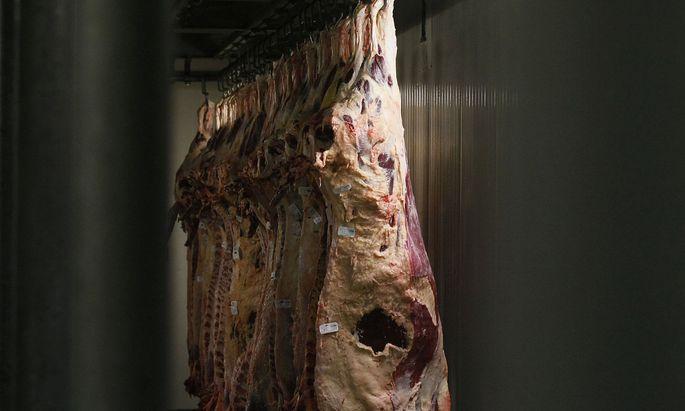 Beef carcasses hang at a cold room at the Biernacki Meat Plant Biernacki slaughterhouse in Golina near Jarocin