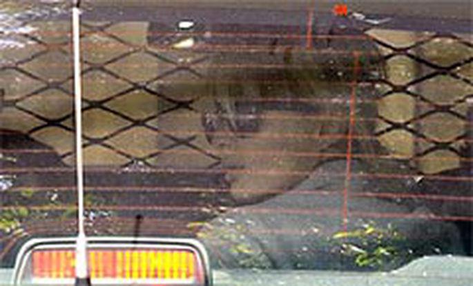 Paris Hilton im Polizeiauto auf dem Weg zur Anhörung.