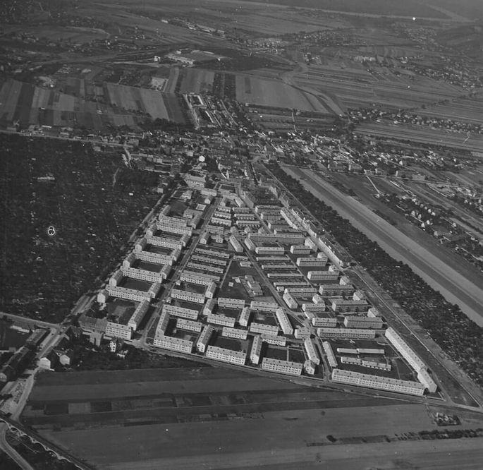 Siedlung Siemensstraße 1954: hohe Häuserblocks am Rand, je mittiger, desto niedriger.