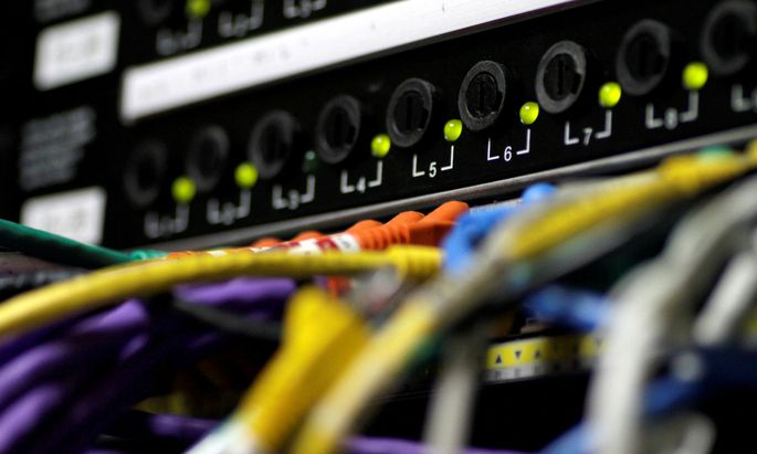FILE PHOTO: LAN network cables plugged into a server in Singapore