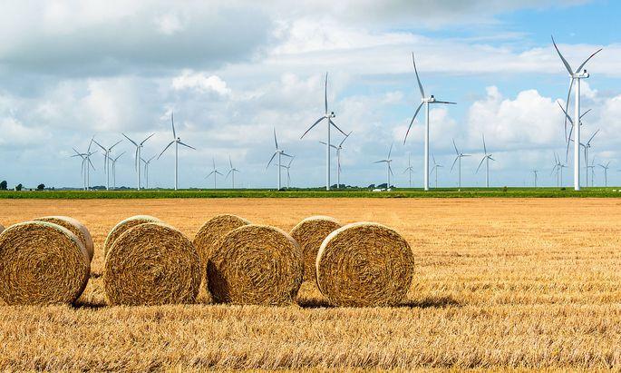 1200 neue Windkraftanlagen sollen bis 2030 in Österreich gebaut werden.
