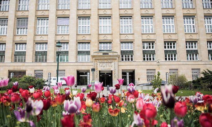 Die neue Aufgabenverteilung zwischen den vier Direktoren der Nationalbank ist umstritten.