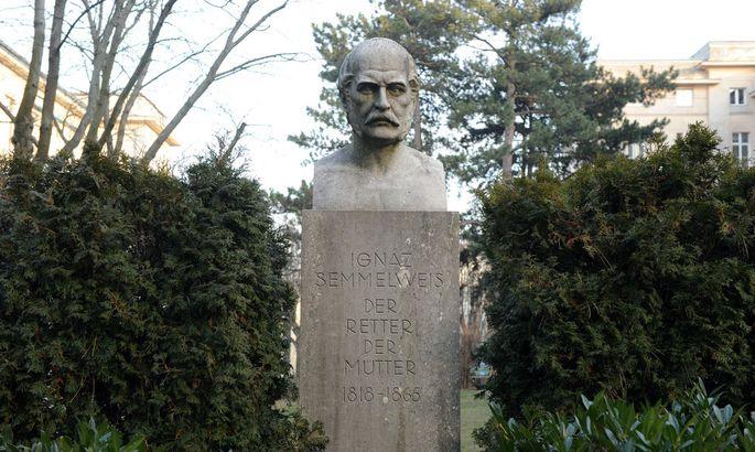 Büste von Ignaz Semmelweis