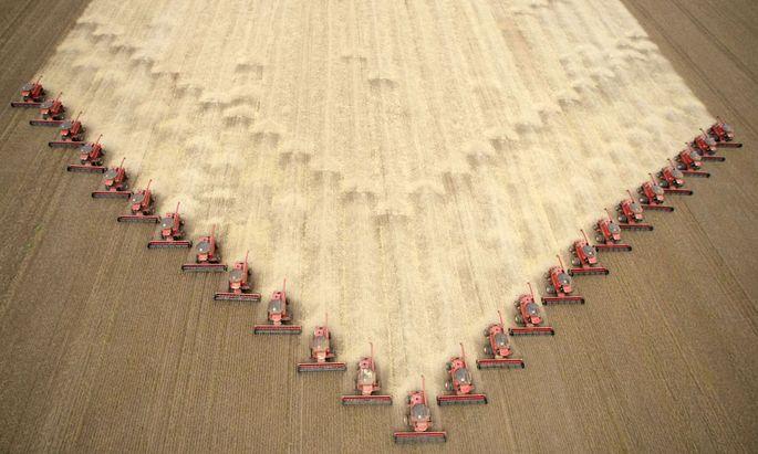 China könnte den US-Bauern künftig mehr Soja abkaufen. Das hätte es aber wahrscheinlich ohnehin getan – mit oder ohne Verhandlungen.