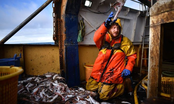 TOPSHOT-BRITAIN-EU-POLITICS-BREXIT-FISHING
