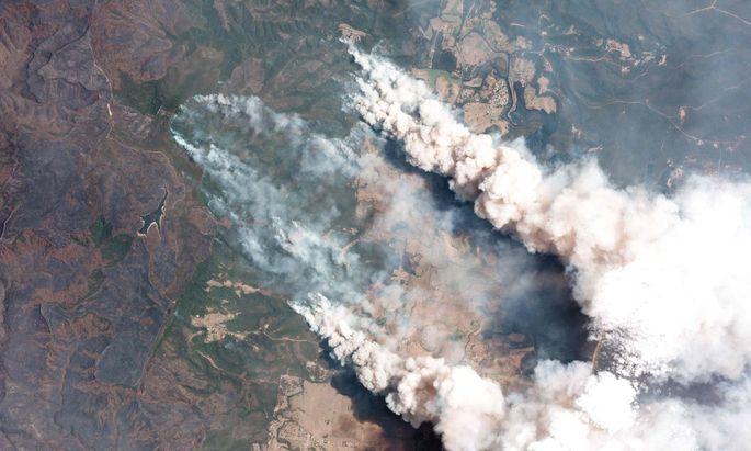 Das riesige Ausmaß der Buschbrände in Australien ist laut Wissenschaft auf die Erderwärmung zurückzuführen