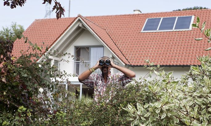 Man looking through binoculars over hedge model released Symbolfoto property released PUBLICATIONxIN