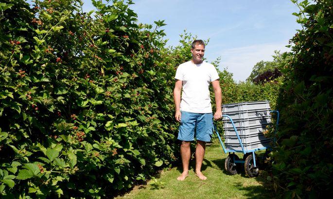 Martin Freimüller kultiviert in Wien Floridsdorf auf 7000 Quadratmetern Brombeeren und macht daraus u. a. Marmeladen, Sirup und Likör.