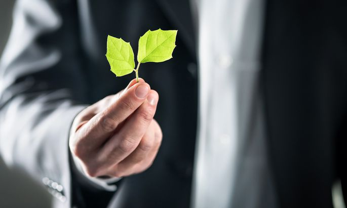 Finanzangebote für Anleger mit Öko- und Sozialbewusstsein sind im Trend. Um hier Weizen von Spreu zu trennen ist aber spezielles Know-how notwendig.