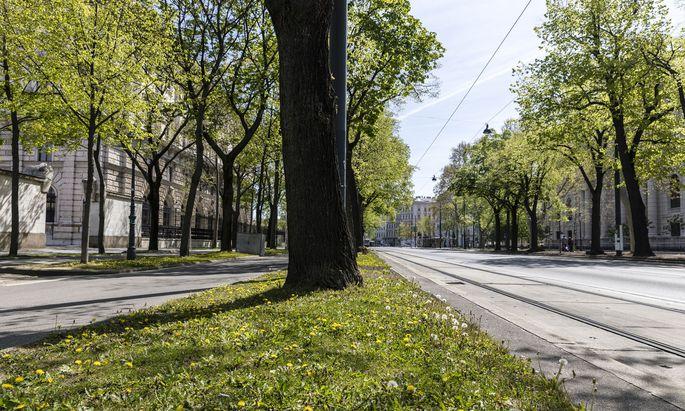 Die gewöhnlich vielbefahrene Wiener Ringstraße soll von den Plänen zur Verkehrsberuhigung nicht betroffen sein. So autofrei wie am Bild war sie nur zur Zeit des Lockdowns im März.