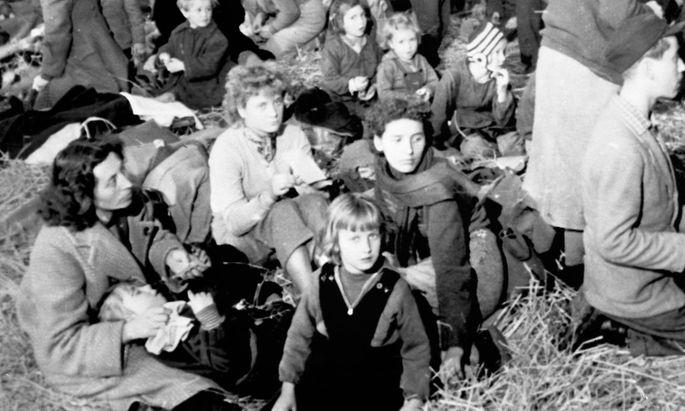 Flüchtlingskrise 1956: Menschlichkeit mit Ablaufdatum