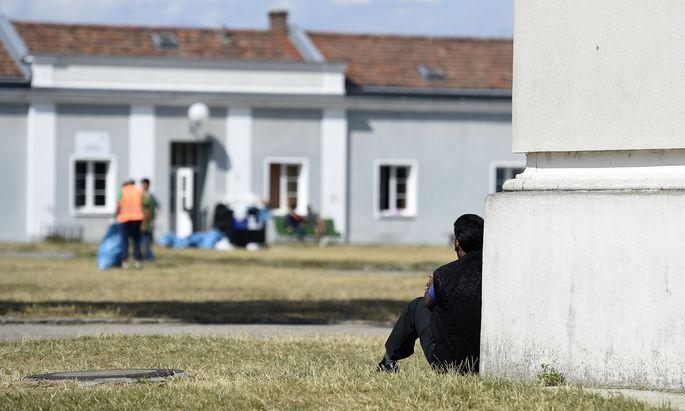 Das AMS und verschiedene Politiker sprachen davon, dass einige Flüchtlingsgruppen besser ausgebildet seien als Österreicher.