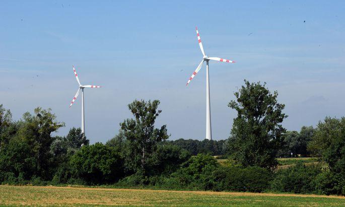 Grüne Investitionen könnten auch bei der Kreditvergabe bevorzugt werden.
