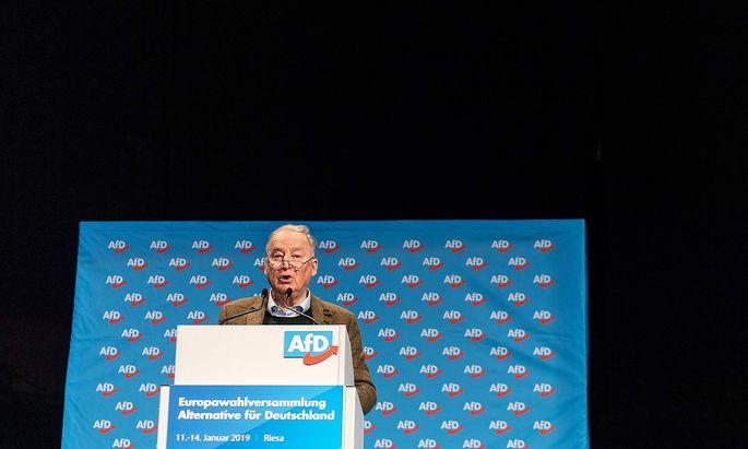 GERMANY-POLITICS-EU-AFD