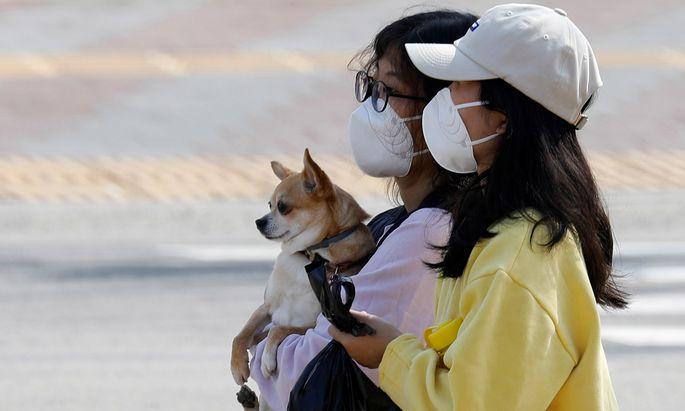 In Südkorea ist die Zahl der Infektionen mit dem Coronavirus auf mehr als 7100 gestiegen.