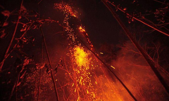 Waldbrände im Amazonasgebiet