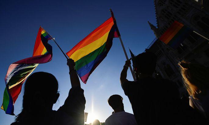 Proteste gegen das neue Anti-LGBT-Gesetz in Budapest blieben ungehört. Auch von den EU-Regierungschefs kommt Kritik an Ungarn.