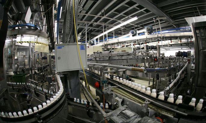 NOeM Molkereikonzern - Produktionshalle