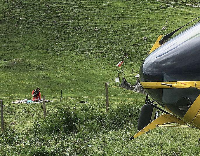 Archivbild: In Tirol kam es im Juni zu einem tödlichen Unfall, als eine Frau mit Hund eine Weide querte.