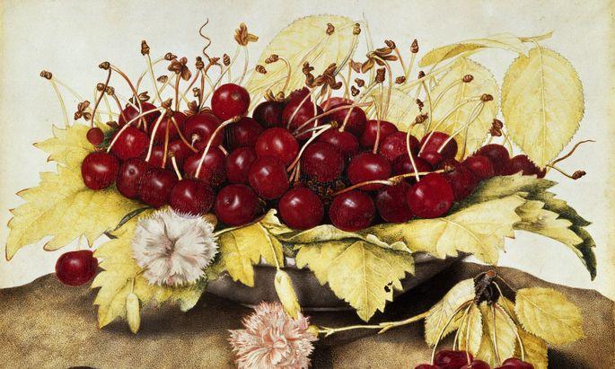 """Ein Geschenk! Und keine einzige Kirsche war wurmstichig. Giovanna Garzoni: """"Schale mit Kirschen und Nelken"""", 1650."""