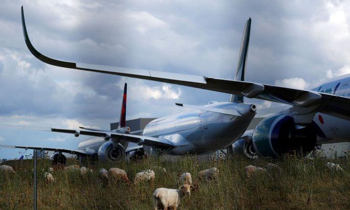 Drei Monate lang stand der internationale Luftverkehr praktisch komplett still. Nun beginnen die Fluglinien nach und nach wieder ihren Betrieb – doch nicht immer mit sauberen Mitteln.