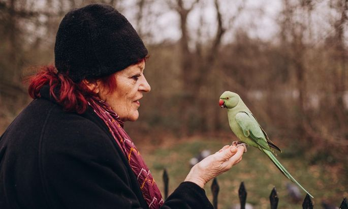 72 Jahre, 72 Alben: Dana Gillespie im Londoner Hyde Park.