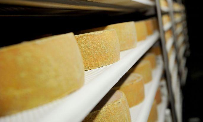 Symbolbild: Käse