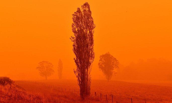 Australien meldet für 2019 Wärmerekord