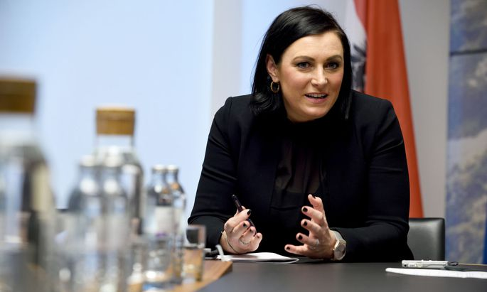 Elisabeth Köstinger, ÖVP
