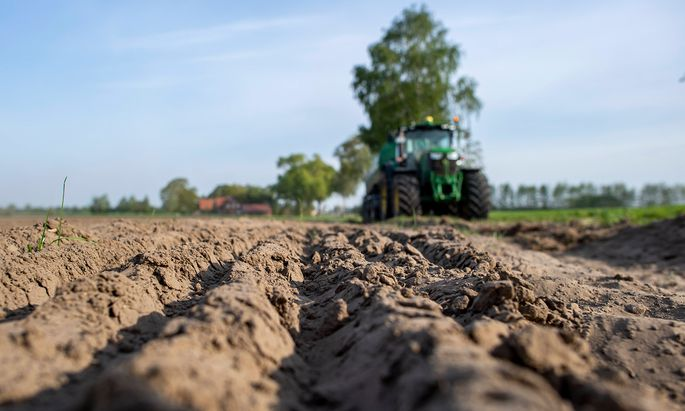 Viel zu wenig Niederschläge gab es dieses Jahr bisher. Österreichs Böden sind ausgetrocknet, und zwar nicht nur an der Oberfläche.