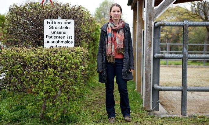 Was Klinikbesuchern verboten ist, sollte im Stall an der Tagesordnung stehen: Streicheln. Stephanie Lürzel fand heraus, dass die Kühe das auch danken.