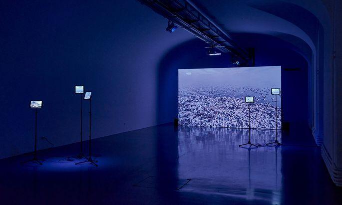 Ursprünglich war die Ausstellung als virtuell begehbares Gesamtwerk angedacht.