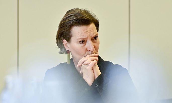 Bangt um ihre Nachfolge: Vorsitzende der SPÖ-Frauen, Gabriele Heinisch-Hosek.