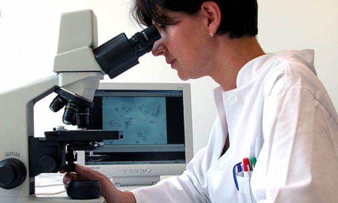 Wissenschaft fuer Maedchen Kritik
