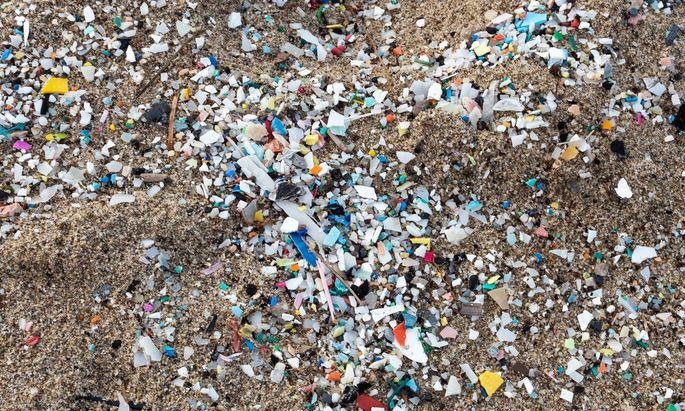 Die Plastikteilchen am Foto sind um vielfaches größer als die im Menschen gefundenen Teilchen