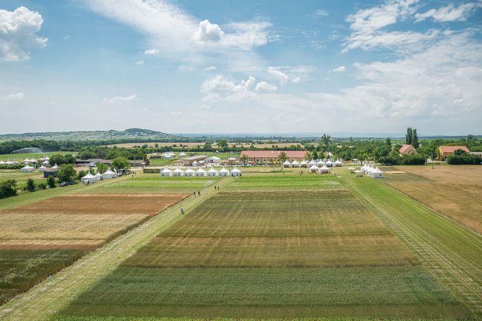 Das Gelände der Biofeldtage bietet auf abwechslungsreiche Art vielfältige Informationen zu landwirtschaftlichen Themen.