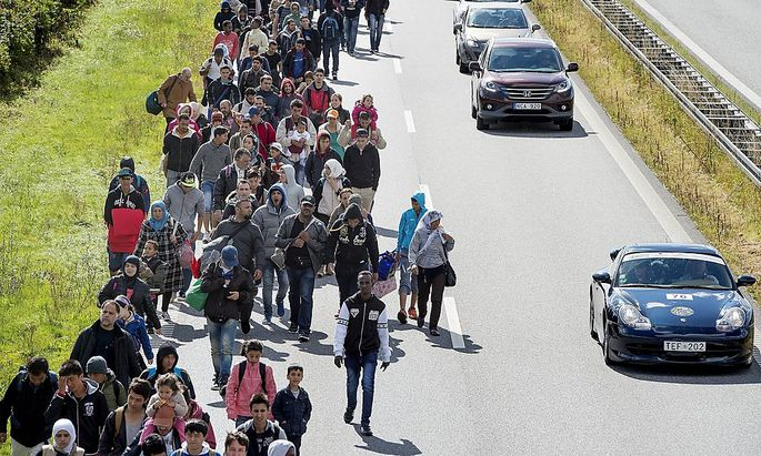 A large group of migrants, mainly from Syria, walk on a highway towards the north