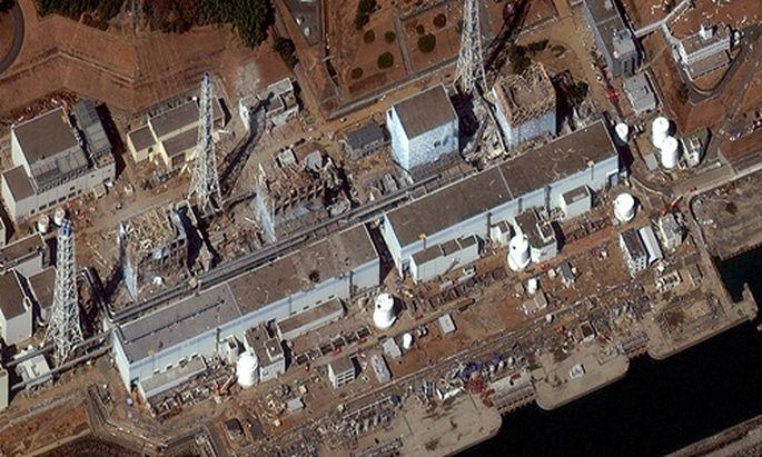 Fukushima Regierung erwaegt weitere