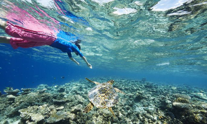 Abtauchen auf den Malediven