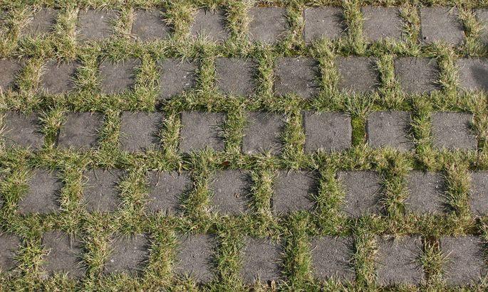 Pflastersteine und Gras