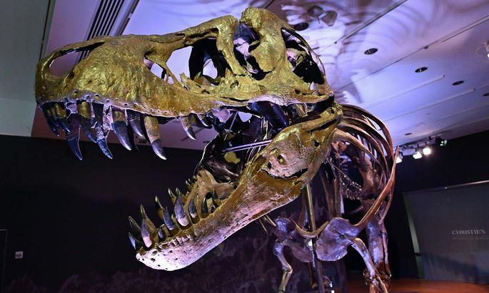 Der Tyrannosaurus Rex namens Stan erzielte bei Christie's 31,8 Millionen Dollar.