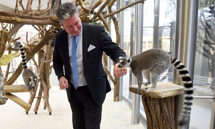 Stephan Hering-Hagenbeck auf einer seiner ersten Runden als Neo-Direktor durch den Zoo. Die Kattas, mit Gemüse fürs Foto gelockt, kennen trotzdem keine Berührungsängsgte.
