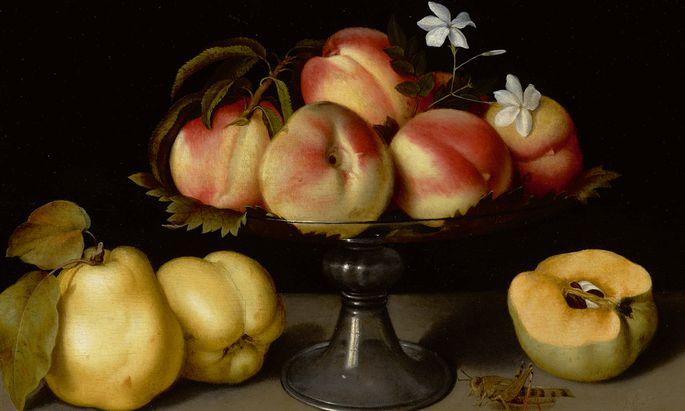 Fede Galizias Stillleben mit Pfirsichen, Jasminblüten, Quitten und einem Grashüpfer kommt am 30. Jänner bei Sotheby's in New York mit einer Schätzung von zwei bis drei Millionen Dollar zum Aufruf.