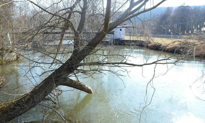 Nur 40 Prozent der heimischen Fließgewässer befinden sich in einem guten ökologischen Zustand.